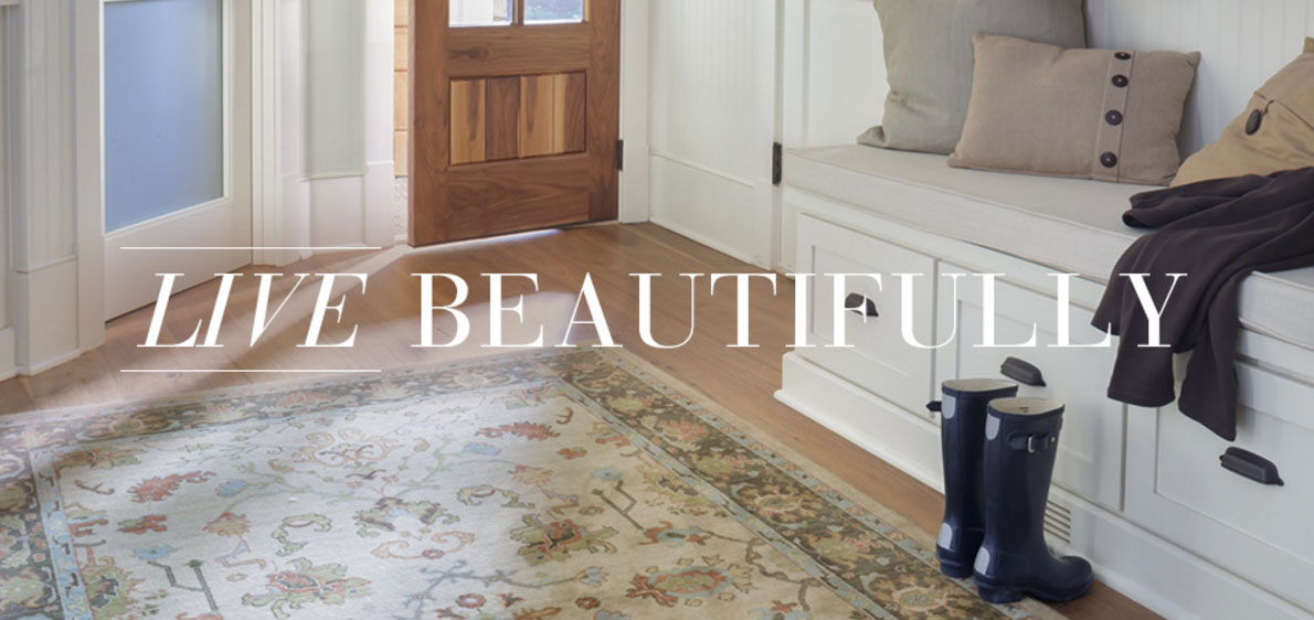Cheap One Room Carpet Cleaning